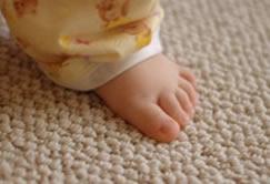 Berber Carpet Cleaning In Bolingbrook IL